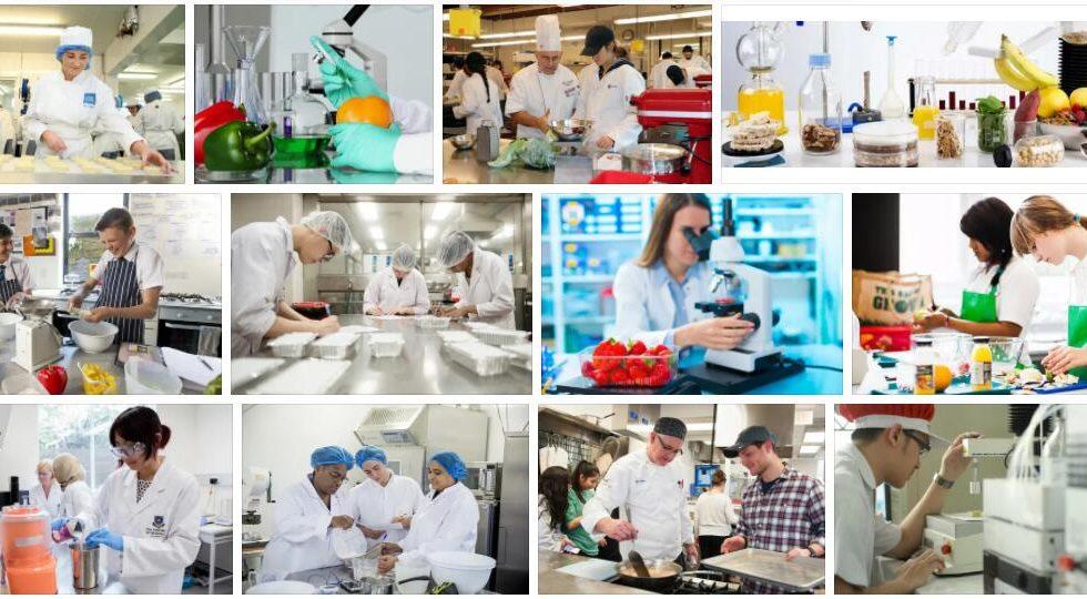 Study Food Technology