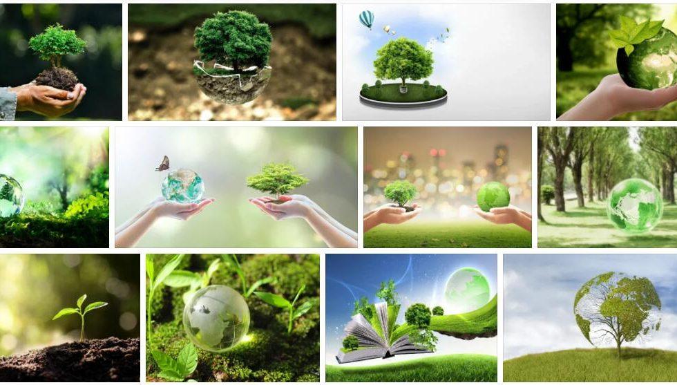 Study Landscape Ecology